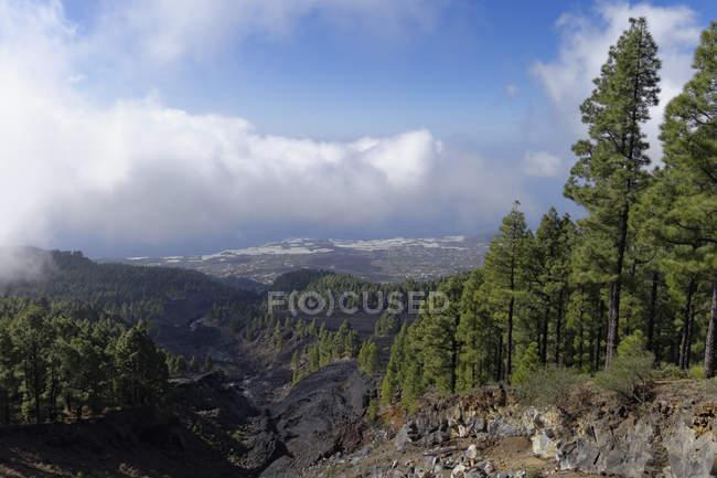 Spain, Canary Islands, La Palma, Coladas de San Juan, Cumbre Vieja, Lava flow — Stock Photo