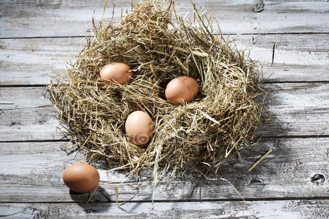Ninho de Páscoa e quatro ovos marrons, cinza de madeira mesa — Fotografia de Stock