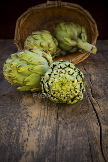Basket of organic artichokes on dark wood with upturned basket — Stock Photo