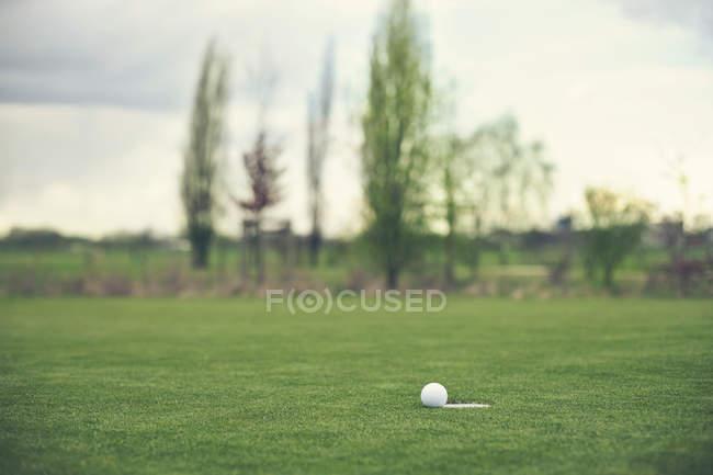 Golfball auf Rasen auf Spielfeld liegend — Stockfoto