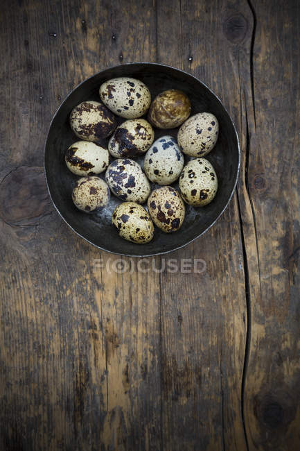 Bowl of quail eggs on dark wooden table, elevated view — Stock Photo