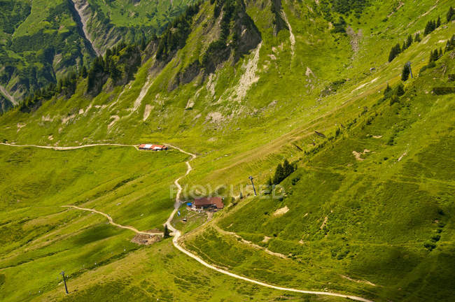 Австрия, Форарльберг, Кляйнвальзерталь, Альпы Альгау, Luechle Alp, вид склона с зеленой травы — стоковое фото