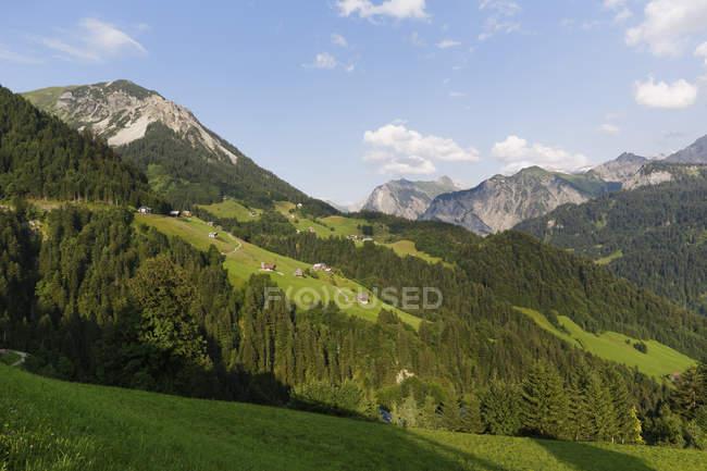 Австрия, Карлберг, Большая Вальзерная долина, Вид с Фонтанеллы, левая горная речка — стоковое фото