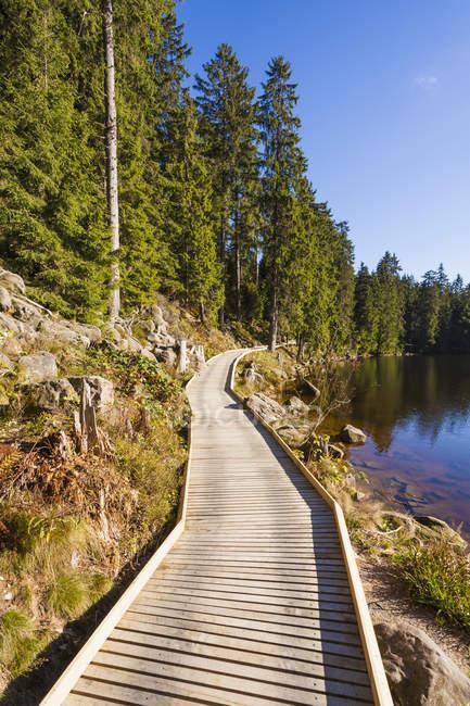 Vista do calçadão de madeira no dia em Mummelsee, floresta negra, Baden-Wuerttemberg, na Alemanha — Fotografia de Stock