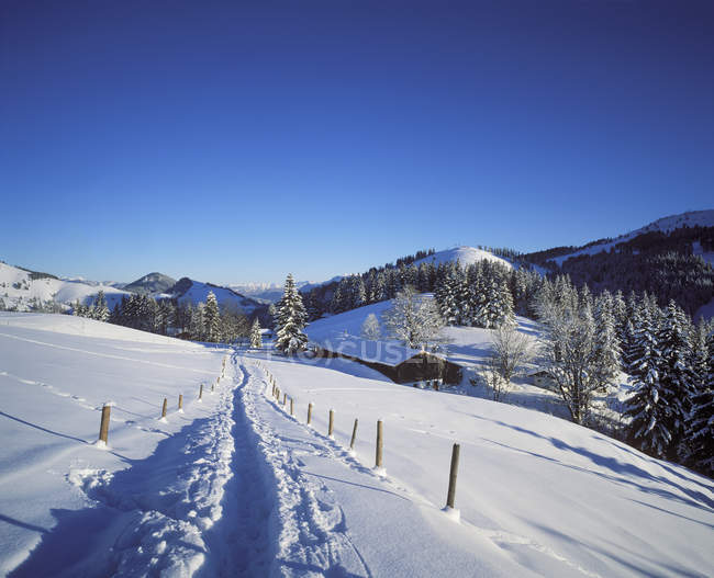 Germany, Bavaria, Upper Bavaria, Manfall Mountains, near Bayrischzell, Sudelfeld — Photo de stock