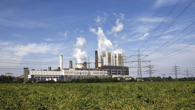 Alemania, Renania del Norte-Westfalia, la central eléctrica de Weisweiler y el césped granulado en primer plano - foto de stock