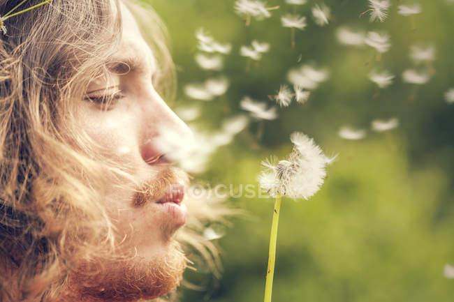 Gros plan de jeune homme soufflant sur blowball — Photo de stock
