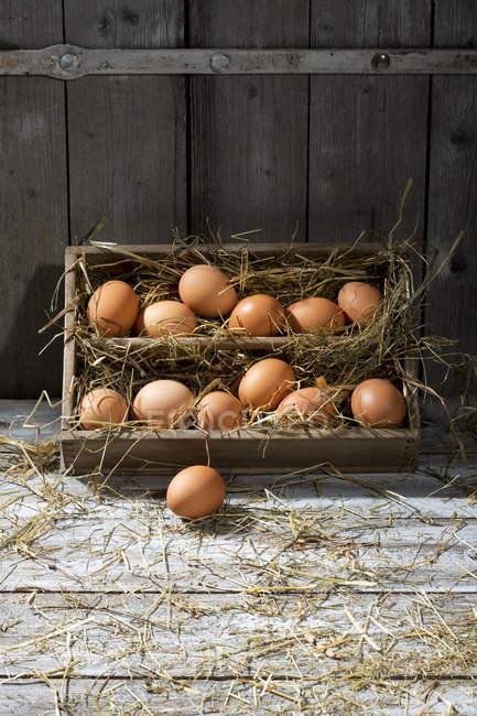 Boîte en bois d'œufs bruns et de foin appuyé sur un mur en bois — Photo de stock