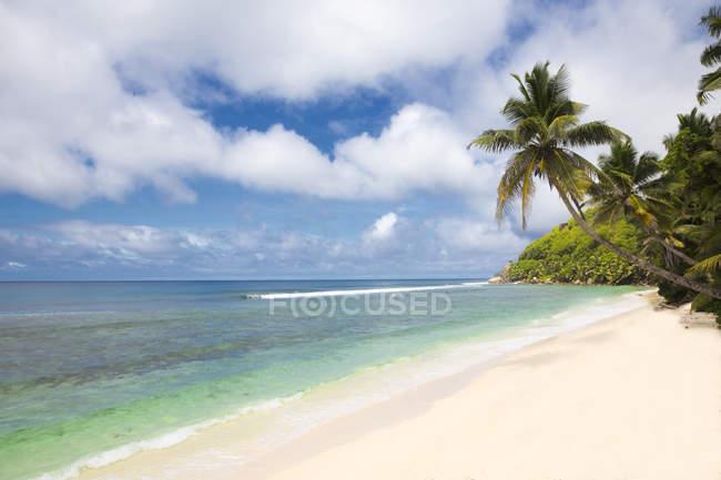 Сейшельские острова, остров Маэ, вид на пляж в дневное время — стоковое фото