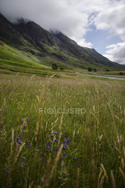 UK, Scotland, Glen Coe, view to Buachaille Etive Mor — Stock Photo