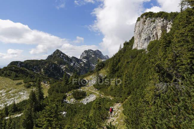 Alemanha, Bavaria, Alta Baviera, pré-Alpes da Baviera, Isarwinkel, trilha no Latschenkopf com Achselkoepfe e Benediktenwand, alpinista — Fotografia de Stock
