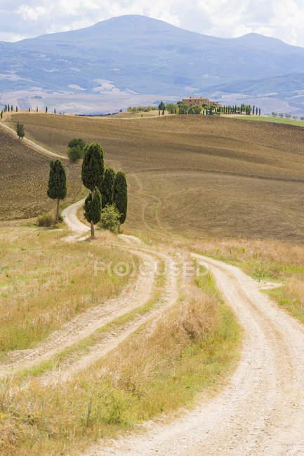 Paisagem rolante com estradas e árvores em Sienna, Val d 'Orcia, Toscana, Itália — Fotografia de Stock