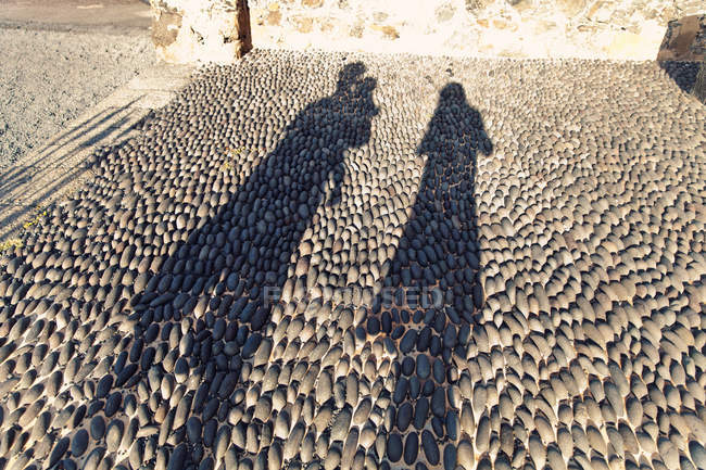 Spain, Lanzarote, Arrecife, silhouettes of family on pavement — Stock Photo