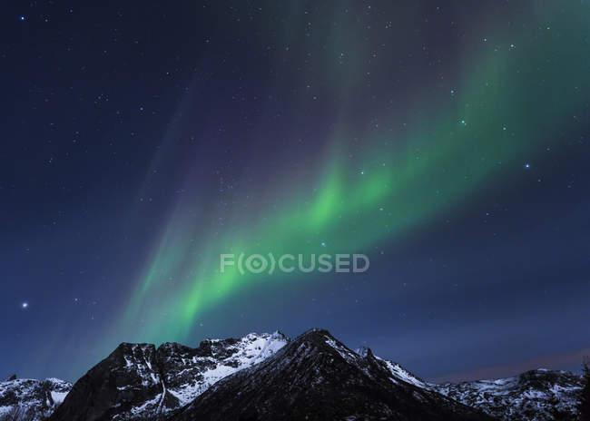 Luces polares (aurora boreal) en Gimsoy, Lofoten, Noruega - foto de stock