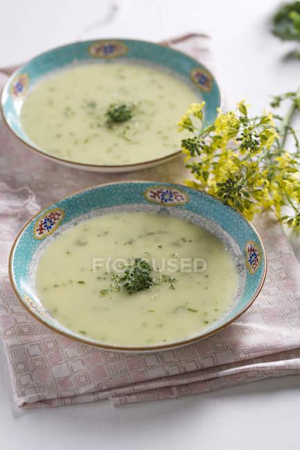 Creme Brokkolisuppe in Schalen und Brokkoli Blume auf Tuch — Stockfoto