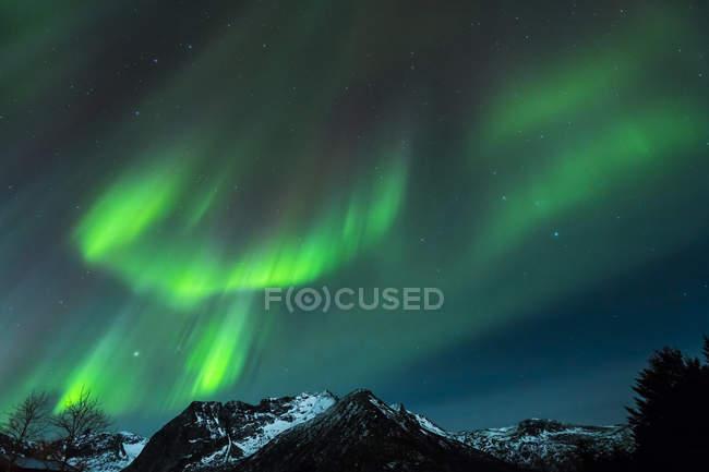 Полярные огни (aurora borealis) в Gimsoy, Lofoten, Norway — стоковое фото
