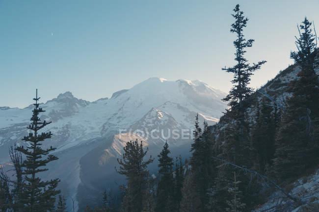 États-Unis, État de Washington, Vue sur le parc national du Mont Rainier pendant la journée — Photo de stock