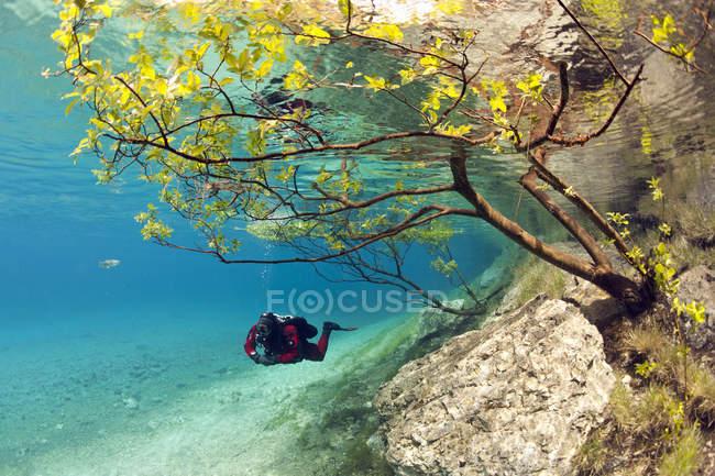 Male diver swimming at Green Lake — Stock Photo