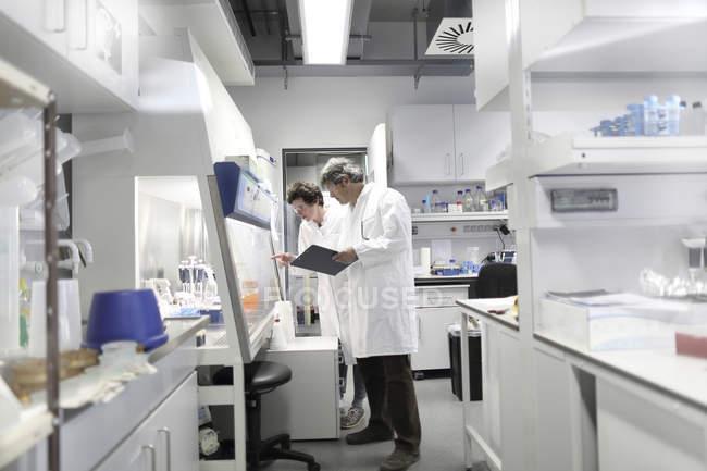Wissenschaftler im Labor diskutieren Experiment — Stockfoto