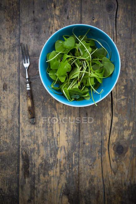 Schüssel mit Winterportulak-Salat und Gabel auf dunklem Holz — Stockfoto