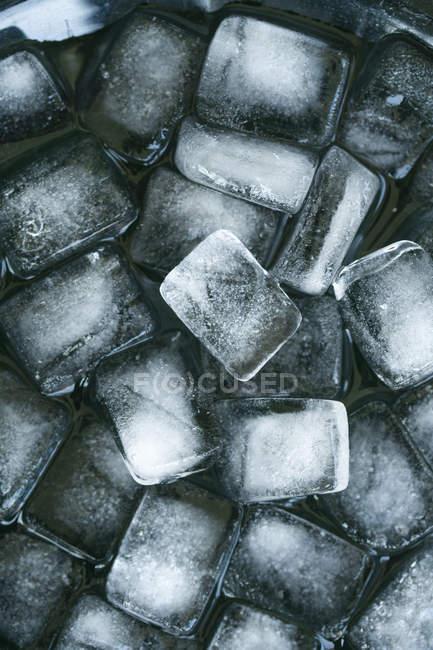 Ice cubes on black background, close-up — Stock Photo