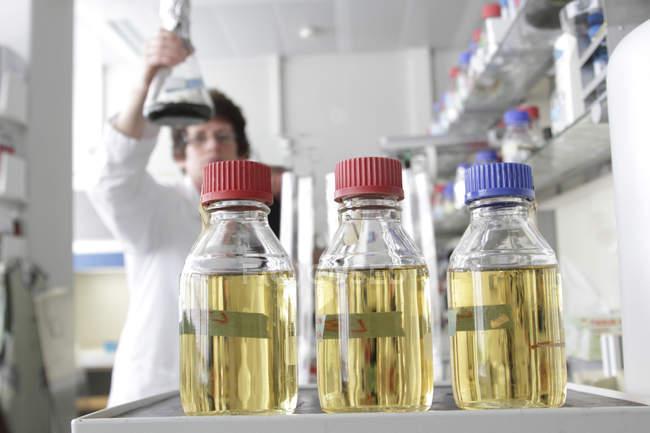 Technicien de laboratoire tenant une bouteille d'algaculture, bouteilles de milieu de croissance au premier plan — Photo de stock