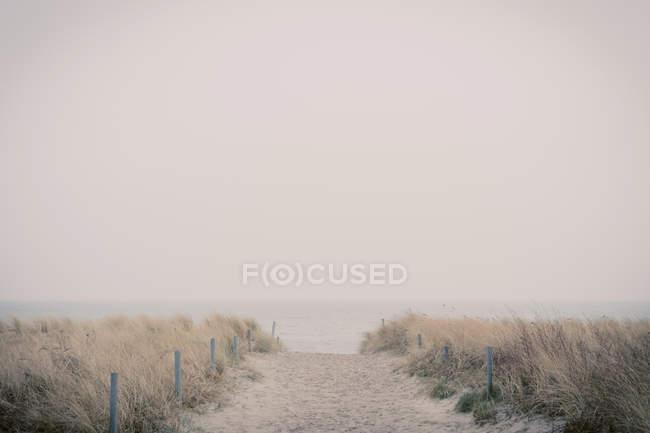 Германия, Мекленбург-Западная Померания, Руген, пешеходная дорожка через дюны — стоковое фото