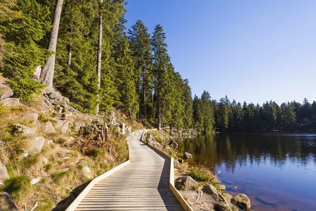 Vue de la promenade en bois de jour à Mummelsee, Forêt Noire, Bade-Wurtemberg, Allemagne — Photo de stock
