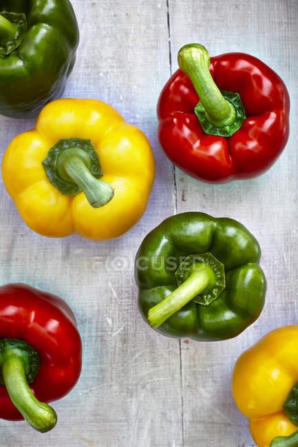 Sei peperoni colorati su legno grigio — Foto stock