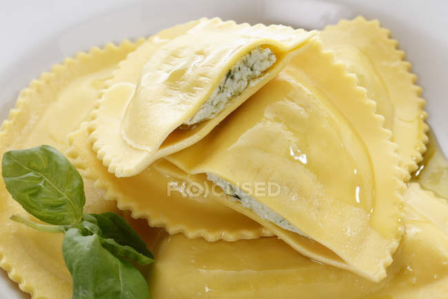 Close-up of stuffed Italian pasta with basil leaves in white plate — Stock Photo