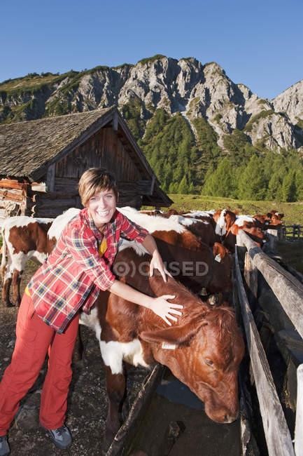 Австрия, Зальцбург Каунти, молодая женщина с коров возле альпийская хижина, улыбаясь — стоковое фото