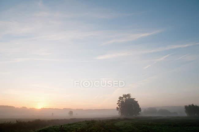 Allemagne, Brandebourg, Vue du lever du soleil avec brume — Photo de stock