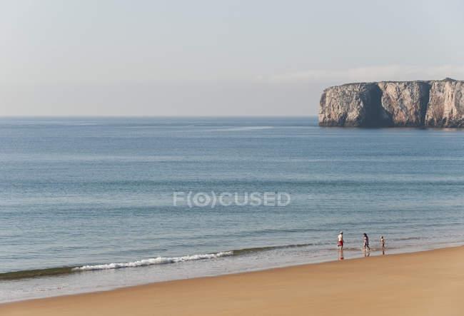 Сім'я веселяться на пляжі в денний час — стокове фото