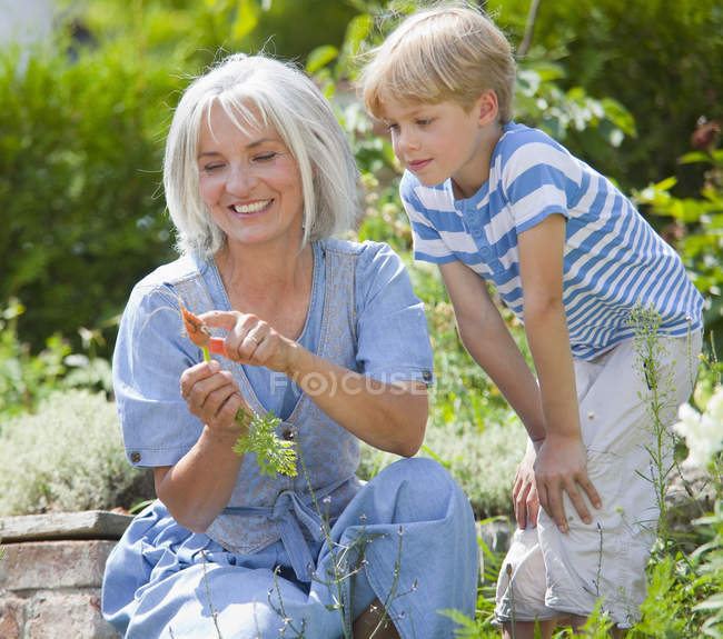 Mature woman and boy inspecting carrots in garden — Stock Photo