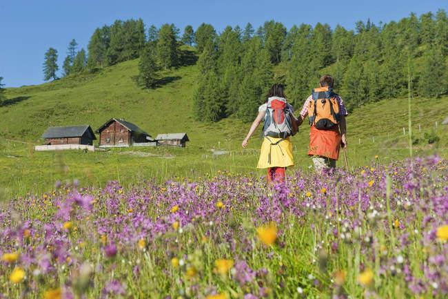 Пара, ходить через альпийские луга — стоковое фото
