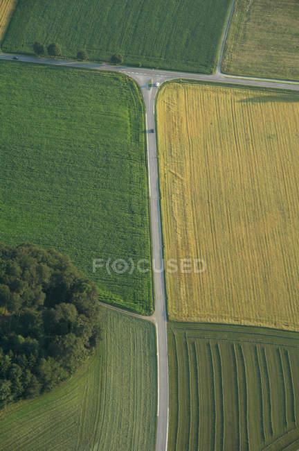 Alemania, Baviera, vista de campos de maíz - foto de stock
