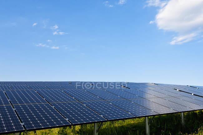 Поле панелі сонячних батарей — стокове фото