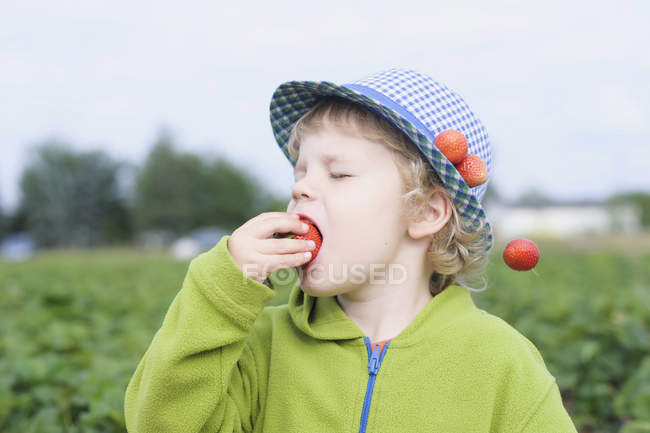 Boy eating strawberry in field, close up — Stock Photo
