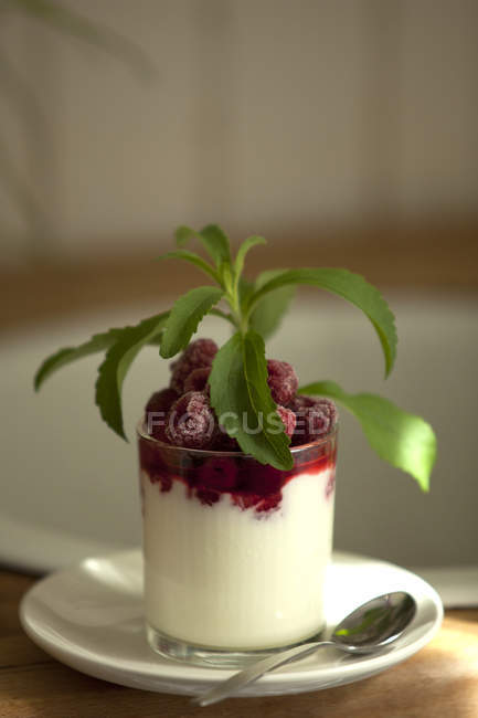 Closeup of glass of cream with raspberries and stevia on table — Stock Photo