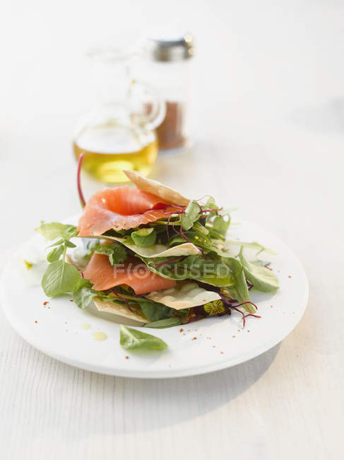Wild herb salad with salmon — Stock Photo
