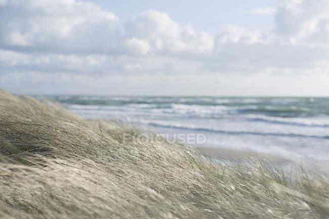 View of Baltic Sea Mecklenburg Western Pomerania, Germany, — Stock Photo
