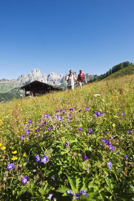 Австрия, Зальцбург, Фильцмоса, пара, ходить через луг — стоковое фото