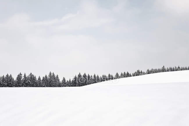 Germany, Bavaria, View of winter landscape — Stock Photo