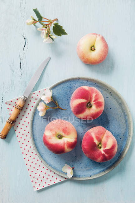 Peaches on ceramic plate with blossom — Stock Photo