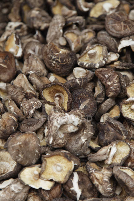 Full frame of pile of ripe uncooked mushrooms — Stock Photo