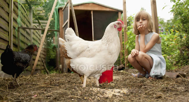 Girl looking at hens — Stock Photo