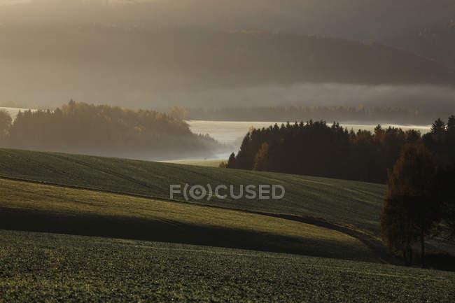 Gremany, Sajonia, vista de paisaje otoñal con niebla - foto de stock