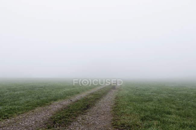 Вид на проселочную дорогу через туман в дневное время — стоковое фото