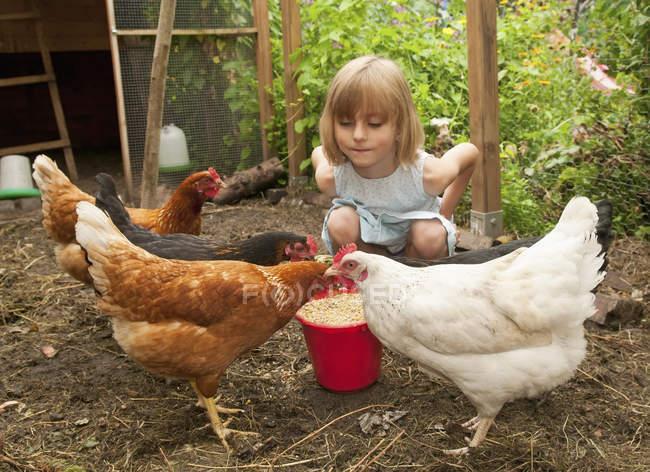 Chica en gallinas en gallinero - foto de stock