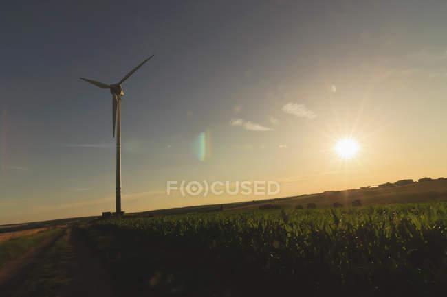 Германия, Саксония, вид ветровой турбины в поле — стоковое фото